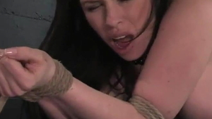 Fake tits whore Daphne Rosen likes whip in HD