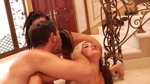 Blowjobs escorted by hairy blonde